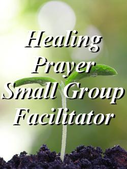 Small Group Facilitator